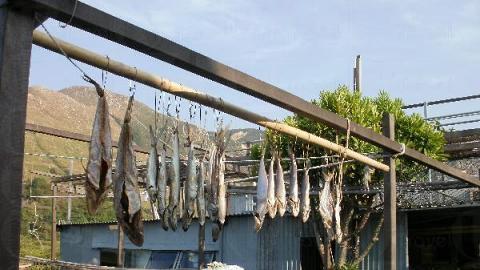 家家戶戶都愛在屋外曬鹹魚。