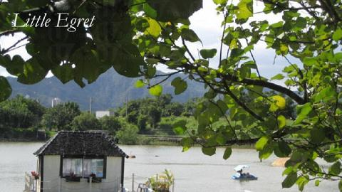 遠眺小白鷺瀉湖, 是大自然的湖水與現代化的火車交錯的印象。