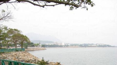 踱步大埔海濱長廊,以單車馳騁於吐露港海岸線,感受海水的鹹香。