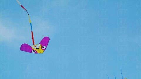 不少遊人趁假日到公園放風箏。
