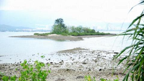 退潮時,可沿海面浮出的沙路走到海中小島拾貝殼。