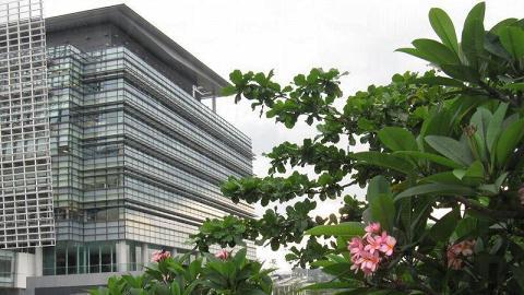 科學園環境清幽,充滿鮮艷的花卉和綠色植物。
