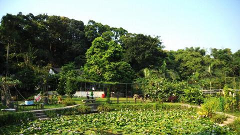 清快塘村的喜香農莊經十年打造,回復生機成了一個雅緻庭園。