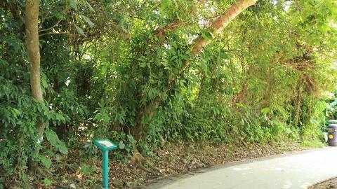 家樂徑沿途風光明媚,行畢整條行山徑約需 1 小時。