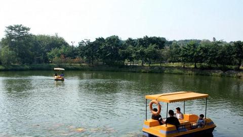 在香港已經極少見的水上單車可在此找到,無論大小朋友都可一嘗這悠閒玩意。