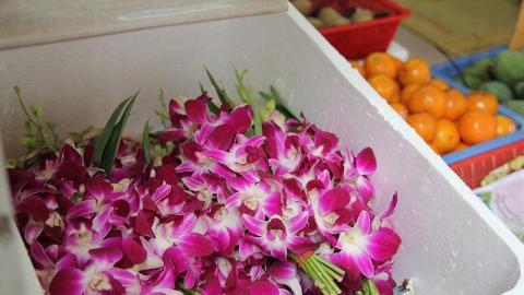城南道到處可見奉神用的花串。