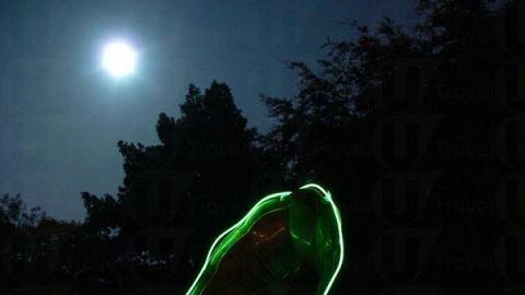 《聲光園》將科技與大自然融為一體,帶來獨一無二的夜行經驗。