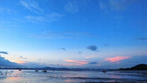 下白泥的泥灘面對后海灣,與深圳蛇口、深圳灣公路大橋遙遙相望。
