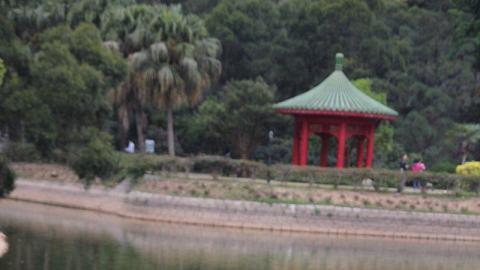 蓮花池和獅子亭互相輝映,又是另一番感覺。