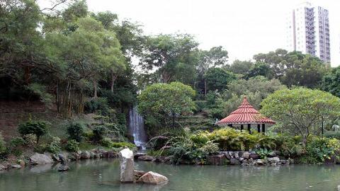 中式庭園,小橋流水,頗有氣派。
