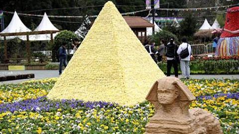花之獅身人面像及金字塔(2012 花展圖片)