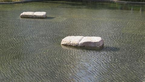 海風吹過公園水面,波光粼粼。