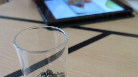 茉莉小龍珠,原來係一粒粒卷埋的茶葉。