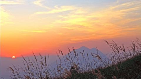【行山路線】秋冬季4大欣賞芒草行山路線推介!昂平高原/彌勒山/大帽山/大東山