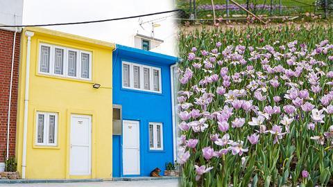 【香港周圍遊】西貢白臘灣人氣3大影相位 輕鬆易行!鬱金香花海/彩色小屋/白臘灣沙灘