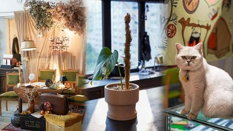 【觀塘好去處】觀塘工廈尋寶4間特色小店推介  民族風露營用品/古董店Cafe/手工漢堡/植物空間