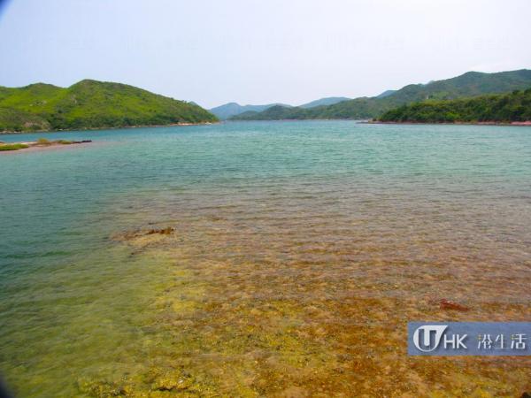 印洲塘海岸公園水質清澈見底,波平如鏡,蘊含極豐富的生態價值
