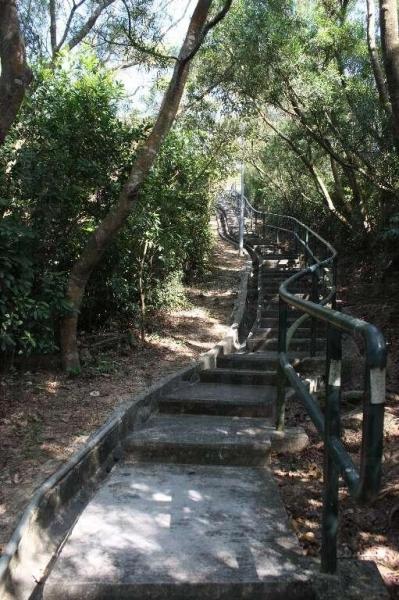 走上手指山的前半段路有樹蔭,石階路也很易行。(陸嘉鈴攝)