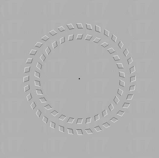 頂樓的展覽廳放置了很多幻覺圖片,你望著中央的黑點,然後將頭慢慢移向前,會發覺車輪在轉動。