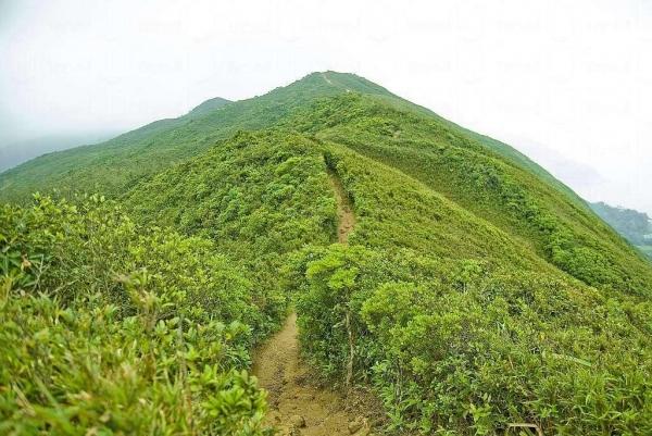 回看龍脊山路,像野長城般蜿蜒起伏。