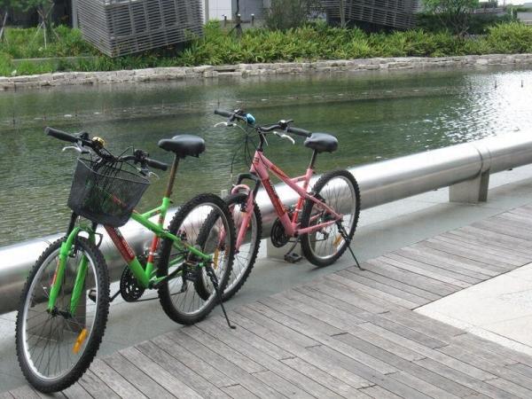 累了的話,不妨泊下單車,到科學園歇一歇。