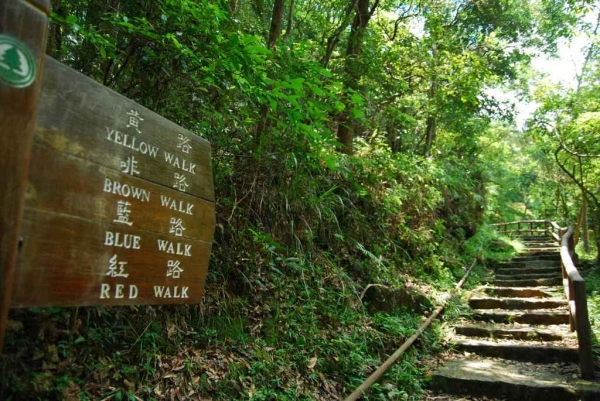 可按時間選擇走紅( 3 公里)、藍( 4 公里 )、棕( 7.5 公里) 、黃( 10 公里 )四條環迴路線。
