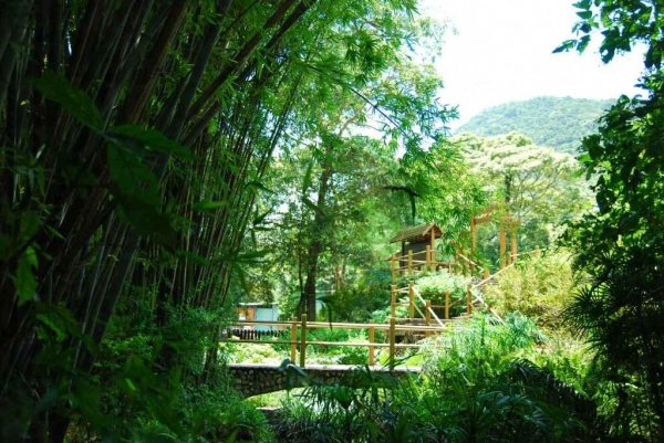 野外研習園的竹林、石橋、小亭,亭園設計頗有心思。