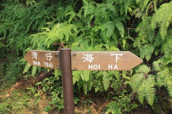 此灣仔不同彼灣仔,不是港島那個,是往西貢的灣仔半島呀!