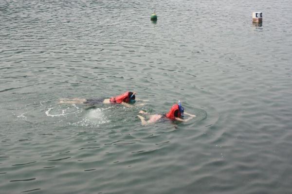 周末有不少遊人前往浮潛,親親珊瑚。