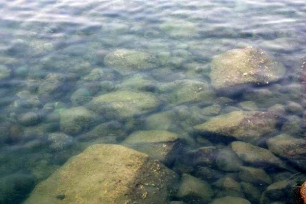 海下灣為保護區,水清見底。