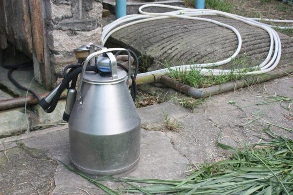 這個就是榨奶機,吸取的奶液會經過消毒,再入瓶出售。