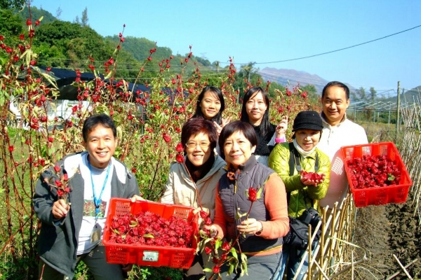 齊齊落田做假日農夫來分享「收成」吧。