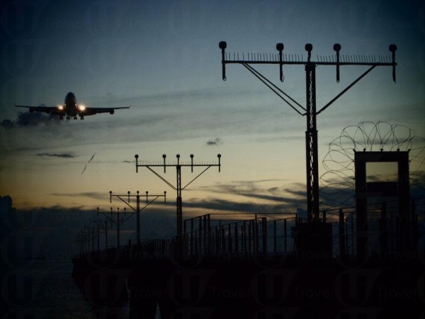 向前電線杆飛來的飛機班次不多,要等這一幕需要一點耐性與時機。
