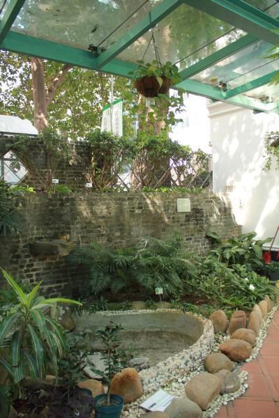 環境資源中心後方是一個環保庭園,種有綠化植物。