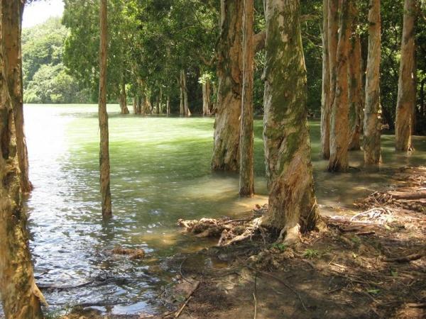 看水浸百千層的塘畔,是電視劇拍攝勝地。