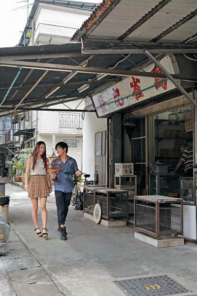 發記雀鳥是大圍村內唯一一間售賣雀粟雀鳥的店舖。