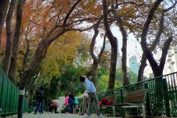相片來源:U Travel Blog - 新之棧