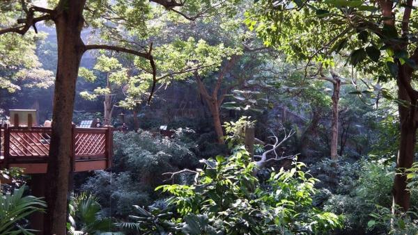 公園設有觀鳥園,免費入場。