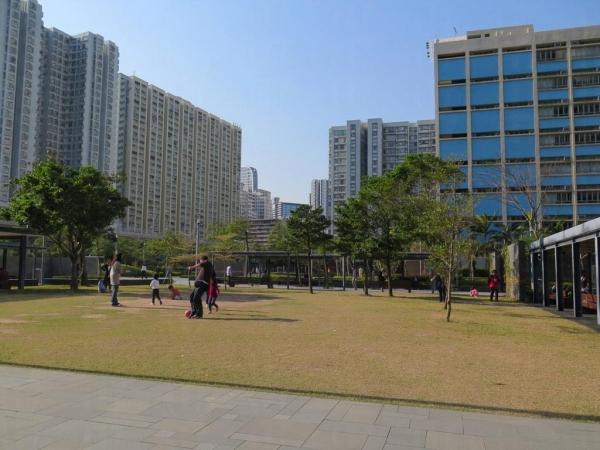 大家可以隨便在公園草地玩耍。