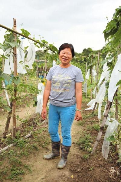 蓮澳有機農場負責人鄭太與先生退休後,共同打理農場,至今已有十多年。