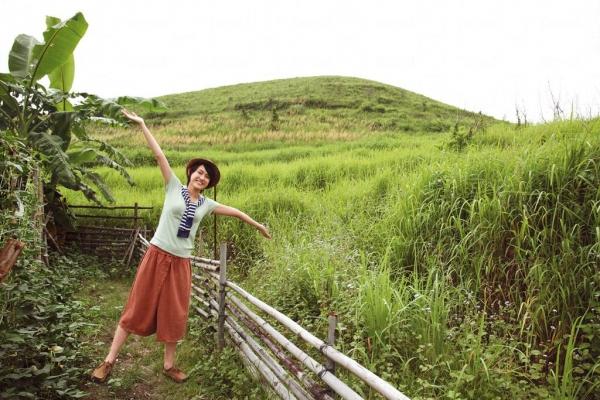 農場後小山坡一片青蔥,還有兩排金黃色芒草。