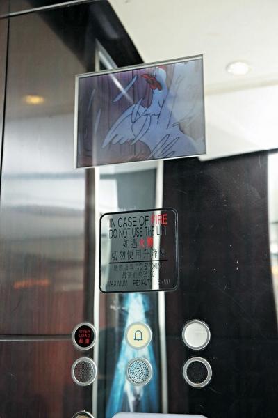 另不少升降機也在機身安裝了屏幕,播放新聞、影片等資訊。